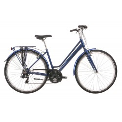 Raleigh Pioneer 1 | Low Step-Over Blue Frame | 21 Speed